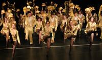 3563 A Chorus Line VHS Drama 03282010