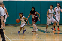 3300 Girls JV Basketball v NW-School 112812