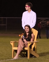7380 VHS Homecoming Court 2010