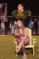 8412 VHS Homecoming Court 2010