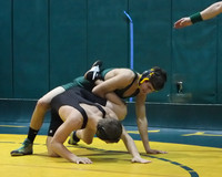 3256 Rock Island Wrestling Tournament 122809