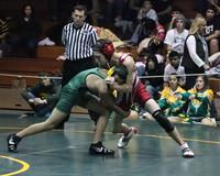 4408 Rock Island Wrestling Tournament 122809