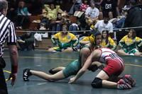 4434 Rock Island Wrestling Tournament 122809
