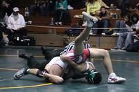 4441 Rock Island Wrestling Tournament 122809