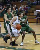 5005 Girls Varsity BBall v Charles Wright 012010