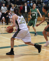 5113 Girls Varsity BBall v Charles Wright 012010