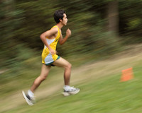 3905 VHS Cross Country 100710