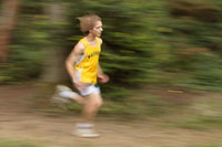 3913 VHS Cross Country 100710