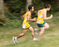 3985 VHS Cross Country 100710