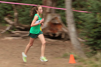 4262 VHS Cross Country 100710