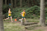 4449 VHS Cross Country 100710