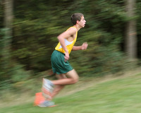 4597 VHS Cross Country 100710