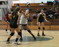 19882 Varsity Volleyball v Chas-Wright 091310